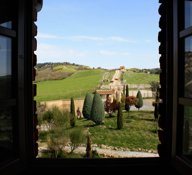vista dalla finestra della camera