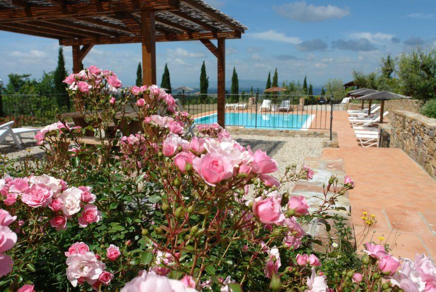 70-piscina-rose