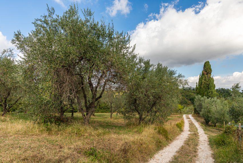 Villa-Enrico-Dal-Canto-011